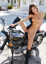 Caprice – Enfield bullet