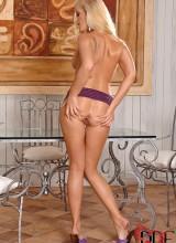 Sandra Shine 13