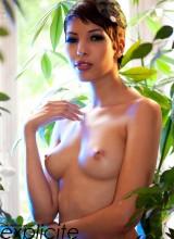 Jasmine Arabia 5