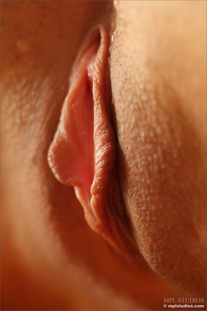фото половых женских органов крупным планом