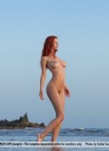 Ariel 9
