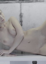 Angelica 11