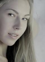Angelica 8