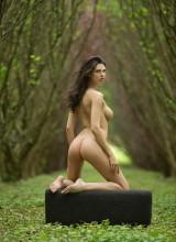 Jasmine 15