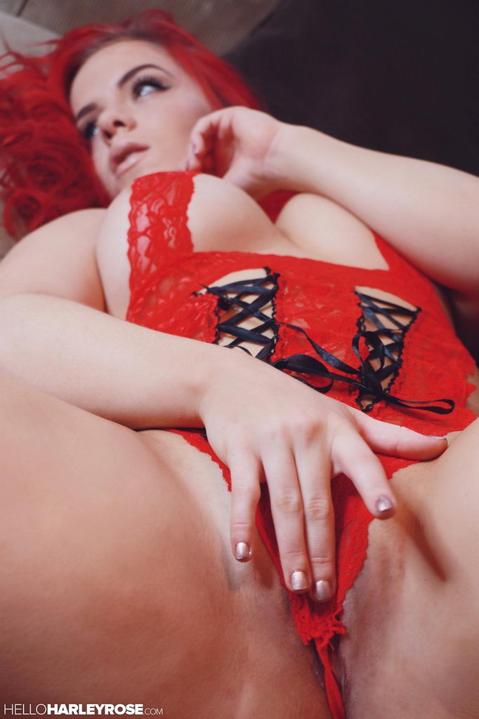 Harley Rose - Red Lace