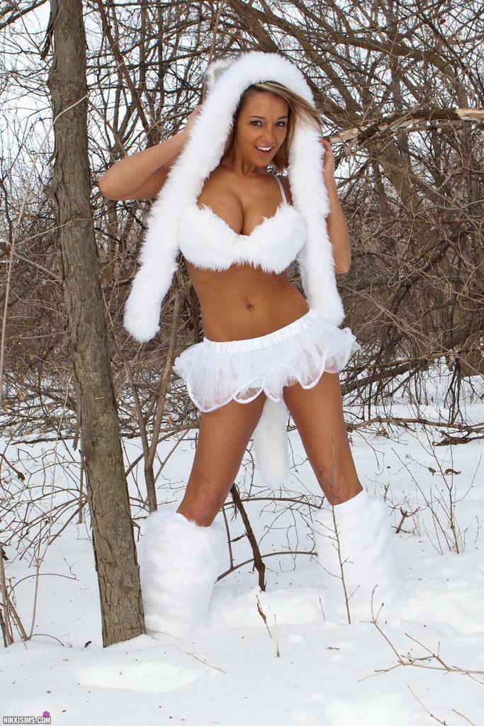 Nikki Sims - Snow Wolf