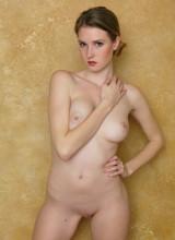 Ashley Lane 11