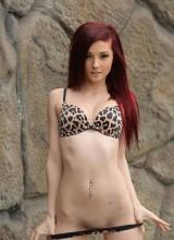 Kylie Cole 7